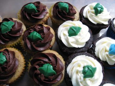 2011 UNC GMU Graduation Cupcakes