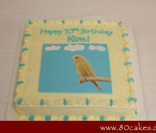 Parakeet Cake